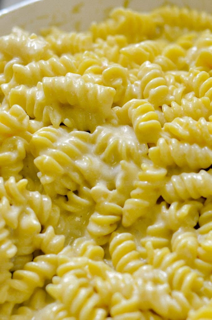 Detail of pasta in macaroni and cheese sauce