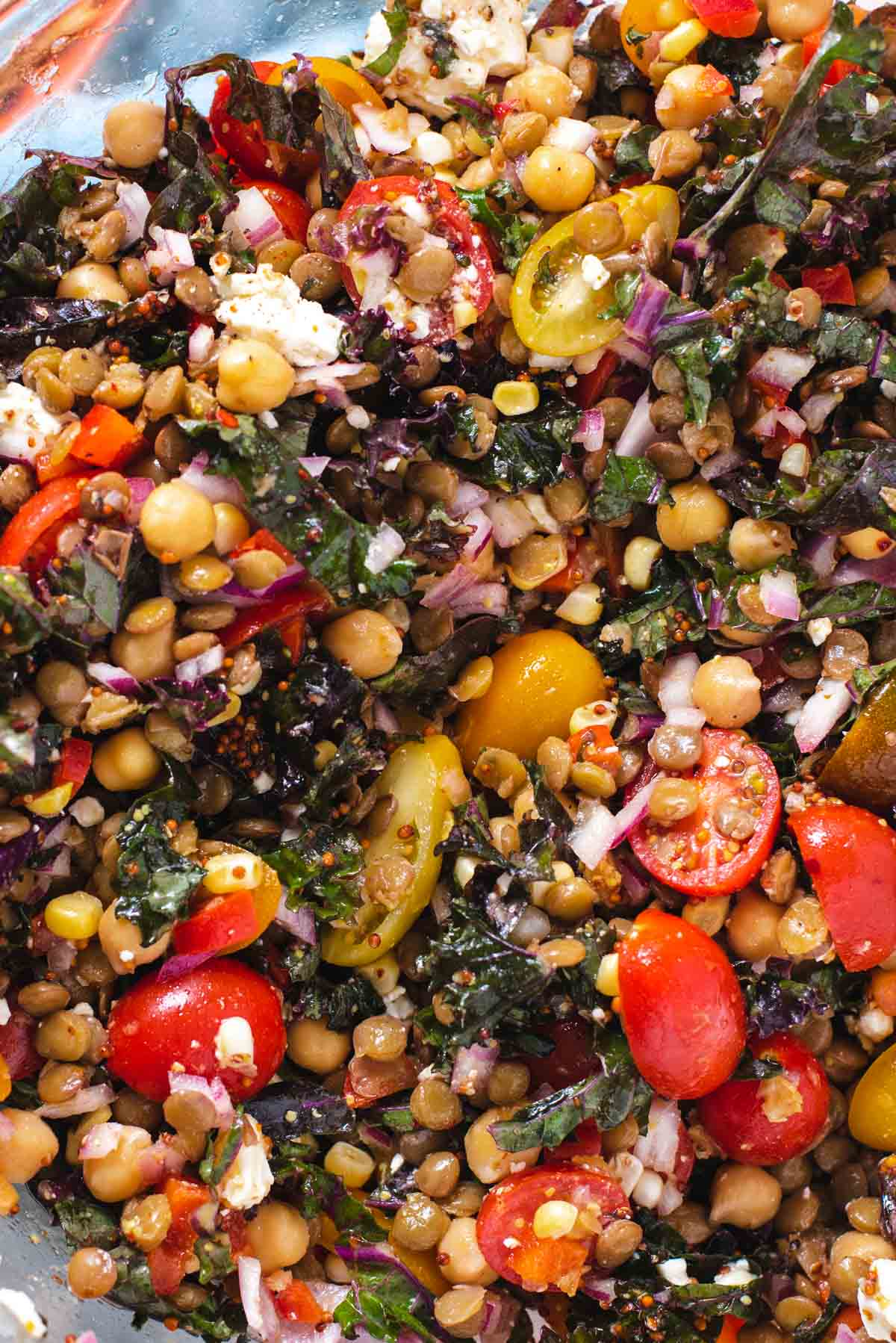 Close up of tomatoes, lentils, chickpeas and kale in lentil salad