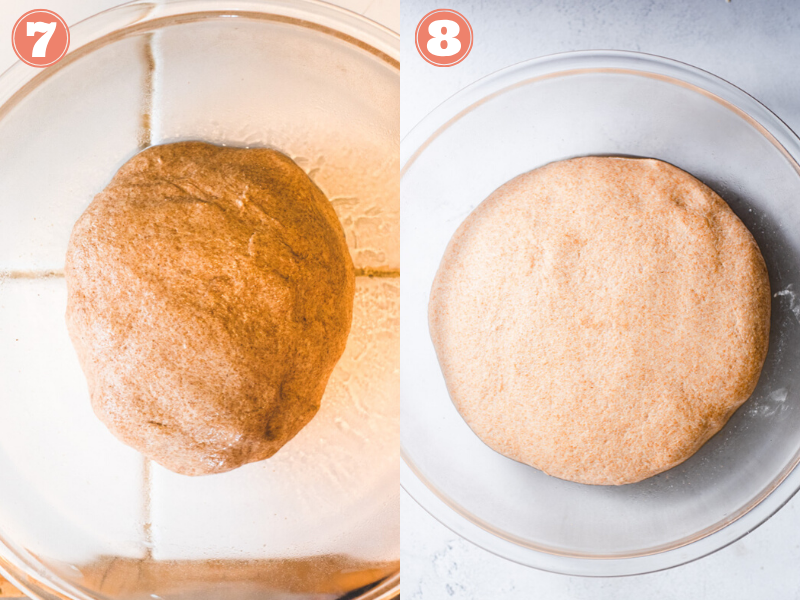 Steps 7 and 8 showing dough before and after doubling in size